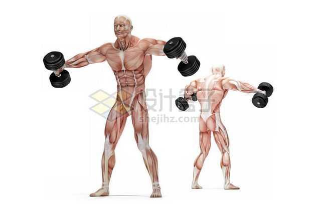 两款男性人体肌肉模型正在哑铃提取健身房动作9118401图片免抠素材
