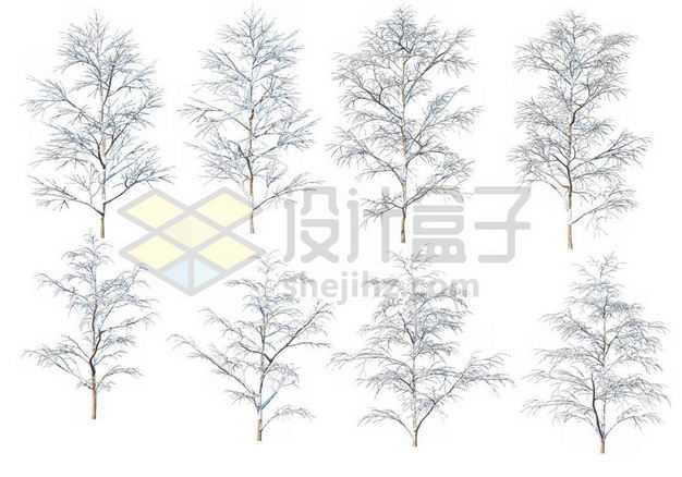 八款冬天积雪的大树等冬季雪景1339531图片免抠素材