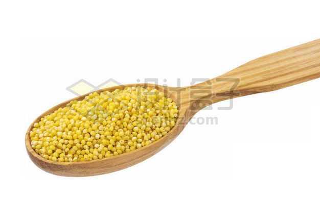 木头勺子里的黄米黄小米红谷小米月子米五谷杂粮粗粮美味美食6553569PSD图片免抠素材