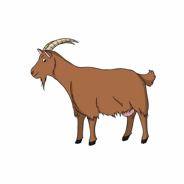 长角的山羊手绘卡通动物插画4614203png图片免抠素材