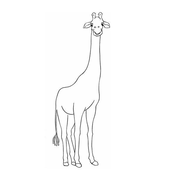 手绘线条风格站立的长颈鹿5554629png图片免抠素材