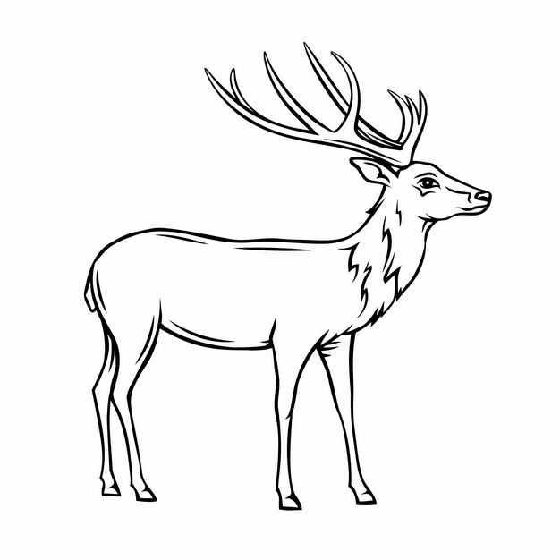 麋鹿驯鹿黑白色线条插画7638052EPS图片免抠素材