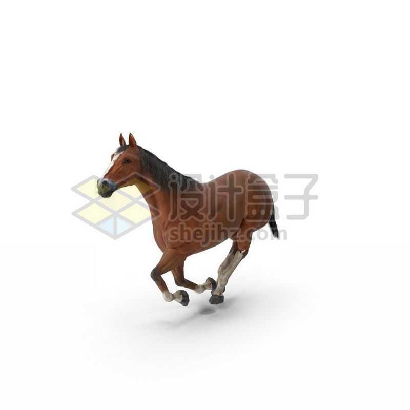 3D立体高清奔跑的栗色骏马7578983图片免抠素材