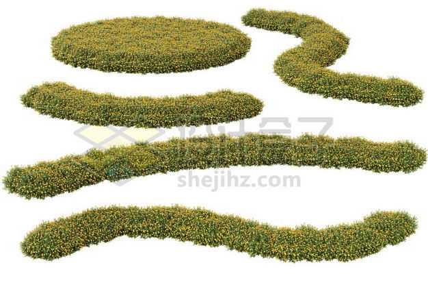 各种形状的黄色花圃公园观赏植物景观植物2210652图片免抠素材