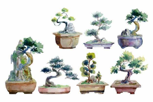 各种柏迎客松盆景罗汉松盆景和奇石盆景水彩插画3984818EPS图片免抠素材