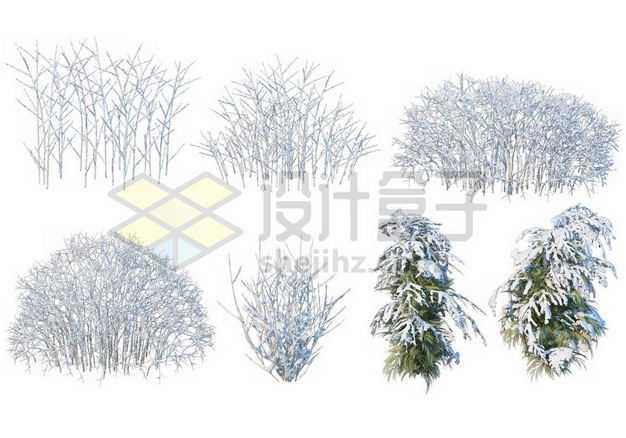 七款冬天积雪的大树雪松等冬季雪景9245261图片免抠素材