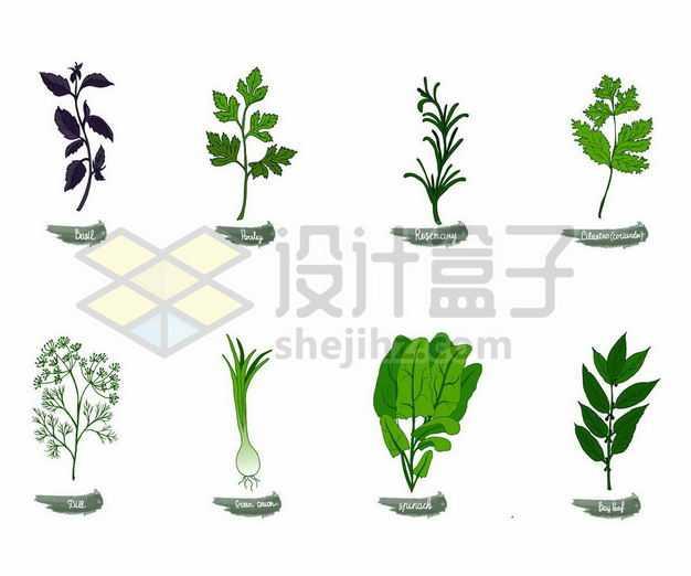 香菜茼蒿大葱菠菜等美味蔬菜叶子7418252png图片免抠素材