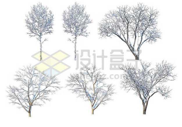 六款冬天积雪的大树等冬季雪景3026859图片免抠素材