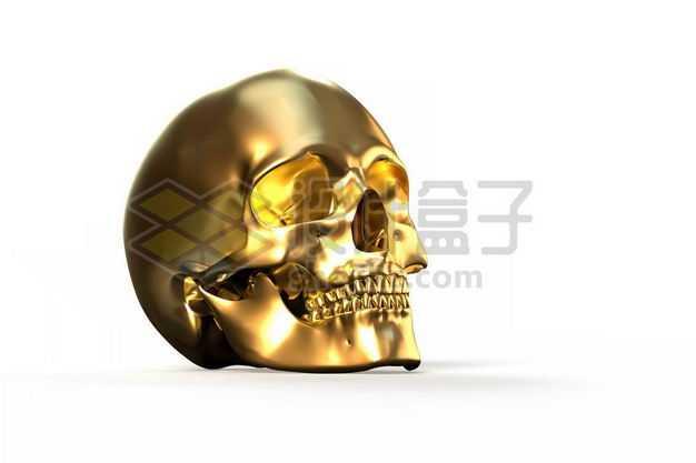 3D立体金色金属光泽骷髅头人体骨骼6527537图片免抠素材