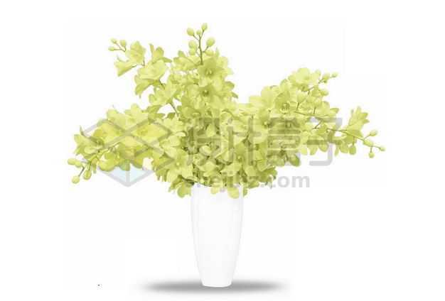 黄色小花绣球花卉花朵鲜花室内观赏植物3517412PSD图片免抠素材