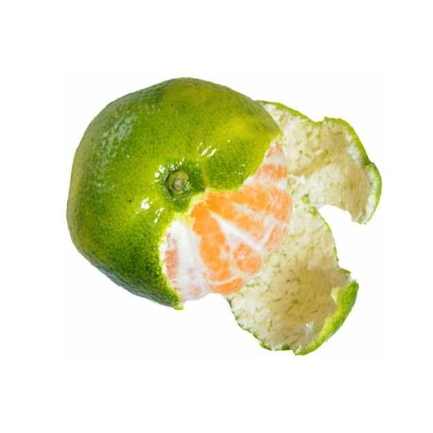 剥皮的青桔子1665176png图片免抠素材