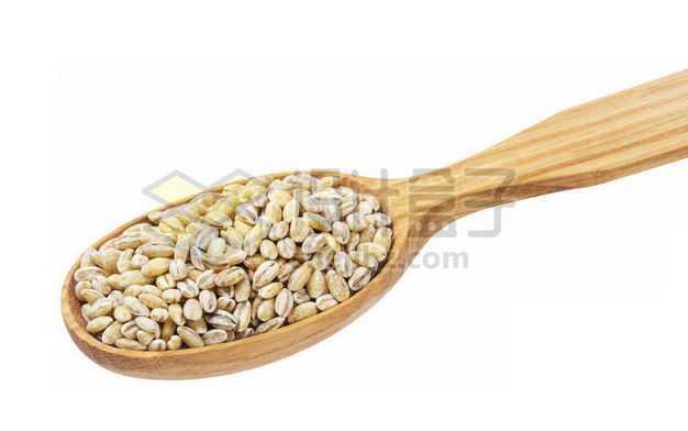 木头勺子里的大麦米去皮大麦仁五谷杂粮粗粮美味美食3278261图片免抠素材