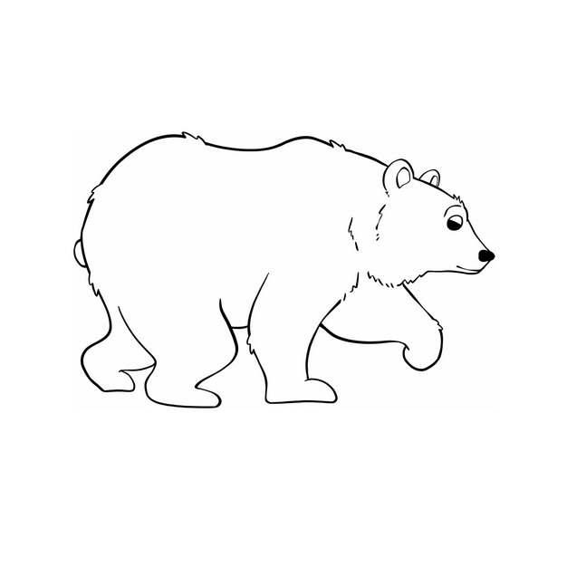 手绘线条风格棕熊黑熊3877333png图片免抠素材