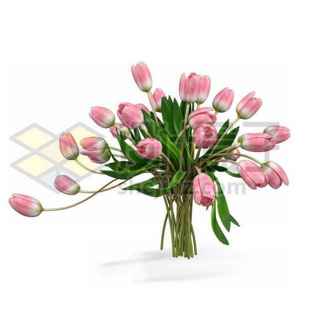 一束郁金香花卉花朵鲜花室内观赏植物6240087PSD图片免抠素材