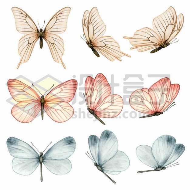 九款彩色蝴蝶彩绘插画6785329png图片免抠素材