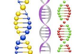 3款水晶风格的DNA双螺旋结构示意图9383102图片免抠素材