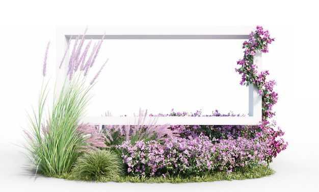 各种茅草观赏植物花卉和3D立体白色方框4017027免抠图片素材