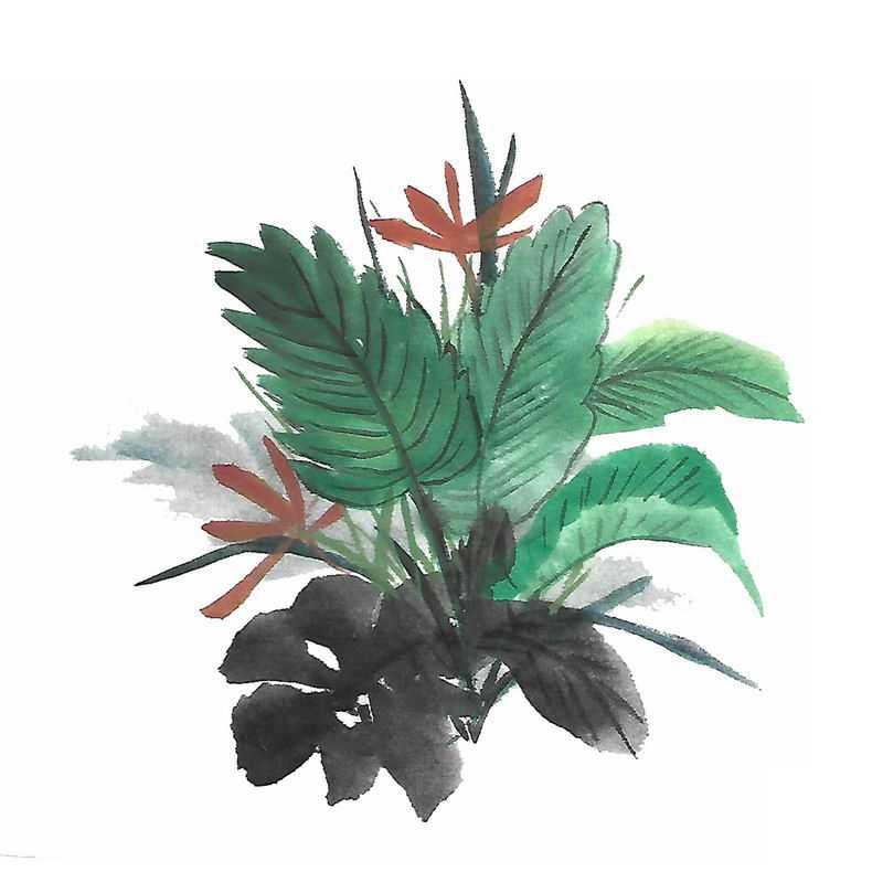 彩色水墨画风格绿叶树叶4986798图片免抠素材