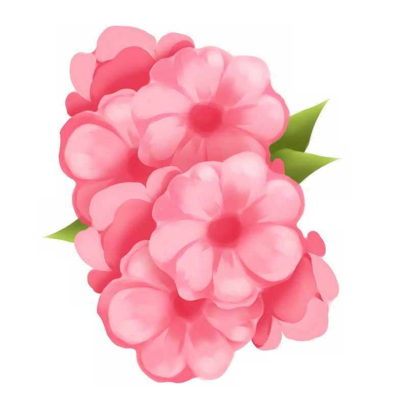 盛开的粉色桃花水彩画9172479图片免抠素材