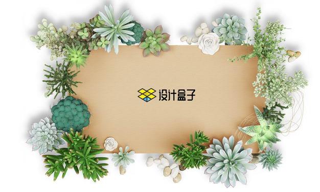各种多肉植物组成的文本框标题框9757426免抠图片素材 边框纹理-第1张