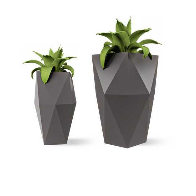 两款艺术风格花盆中的龙舌兰盆栽植物观赏植物2836990免抠图片素材