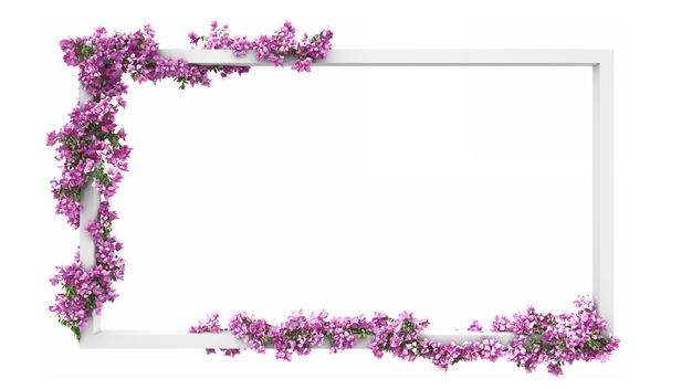 3D立体白色方框和缠绕在上面的紫色花卉6700450免抠图片素材