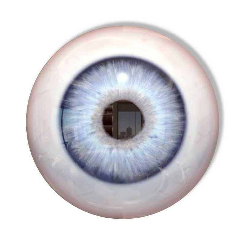 人体眼睛瞳孔3D立体人体器官模型9504429图片免抠素材