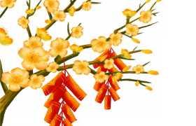 枝头上盛开的黄色梅花和红色鞭炮手绘插画5705216图片免抠素材