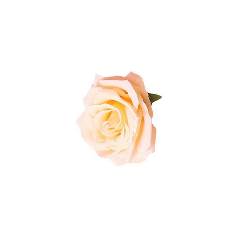 一朵淡粉色的玫瑰花鲜花花卉花朵4975453png图片免抠素材