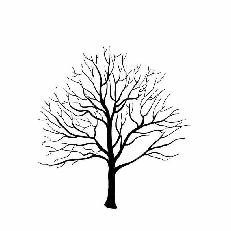 黑色的手绘风格干枯的大树3244782png图片免抠素材