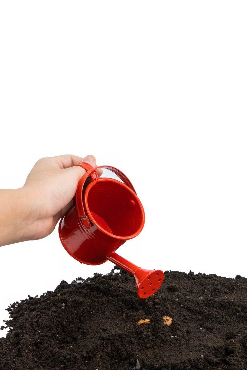 给种子浇水黑土地上播种春季种植3846527png图片免抠素材 工业农业-第1张