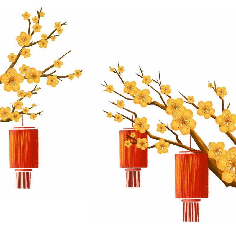 枝头上盛开的黄色梅花和手绘风格红灯笼插画8882092图片免抠素材