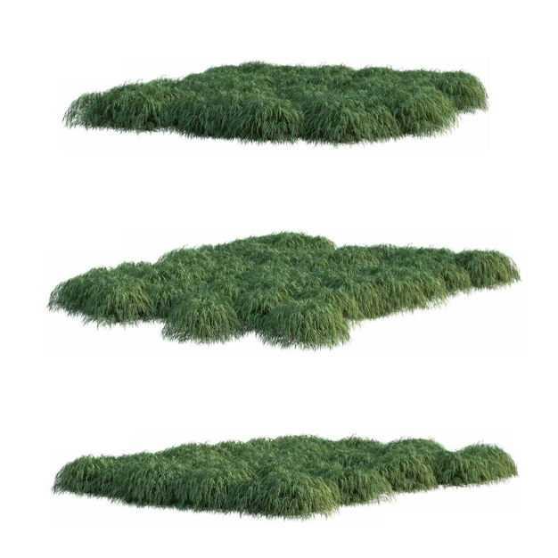 三款草坪草地草丛园林绿色植物6172779免抠图片素材