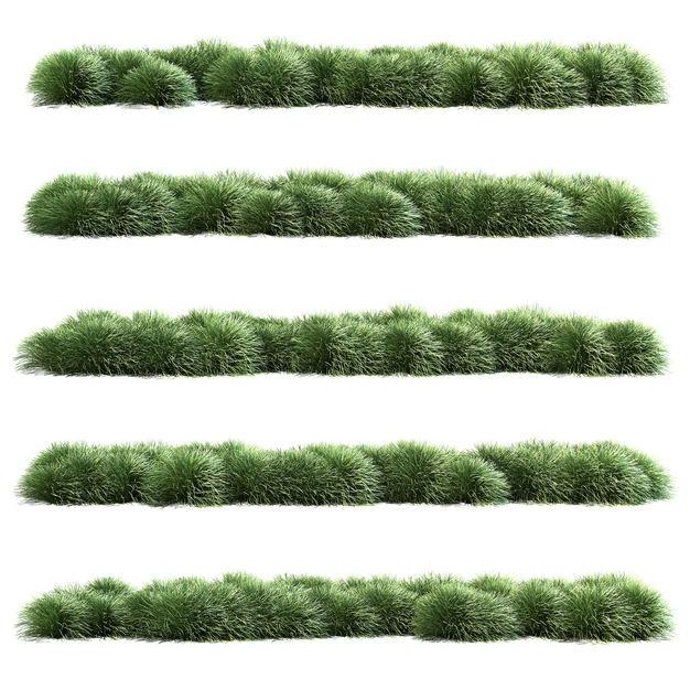 五款茅草野草组成的草丛园林绿植装饰3814945免抠图片素材 生物自然-第1张