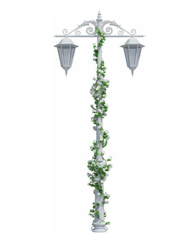 白色路灯杆上缠绕着绿色藤蔓植物7225183免抠图片素材