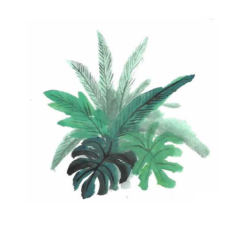 彩色水墨画风格绿叶树叶9258212图片免抠素材