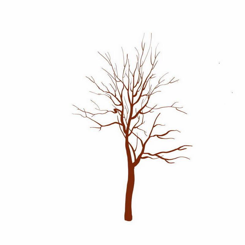 手绘风格干枯的大树4498214png图片免抠素材 生物自然-第1张