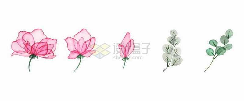 粉红色的花朵和绿色树叶水彩插画8747201矢量图片免抠素材