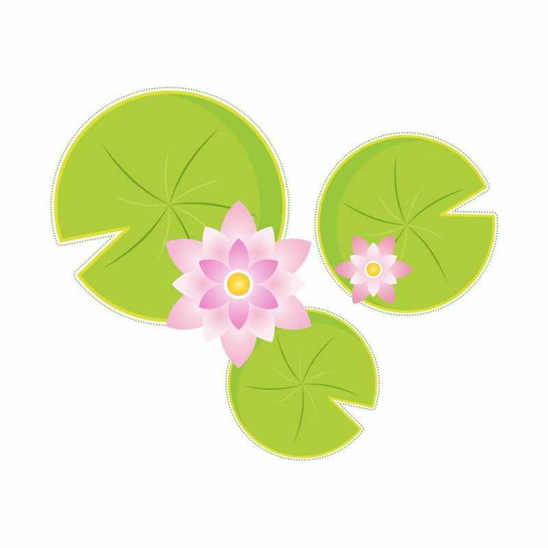 俯视视角的粉红色莲花和翠绿色莲叶简约插画9325610矢量图片免抠素材