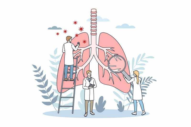 医生正在检查肺部健康医疗插画7898748图片免抠素材