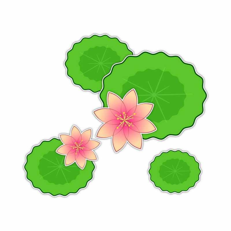 俯视视角的粉红色莲花和绿色莲叶6804418矢量图片免抠素材