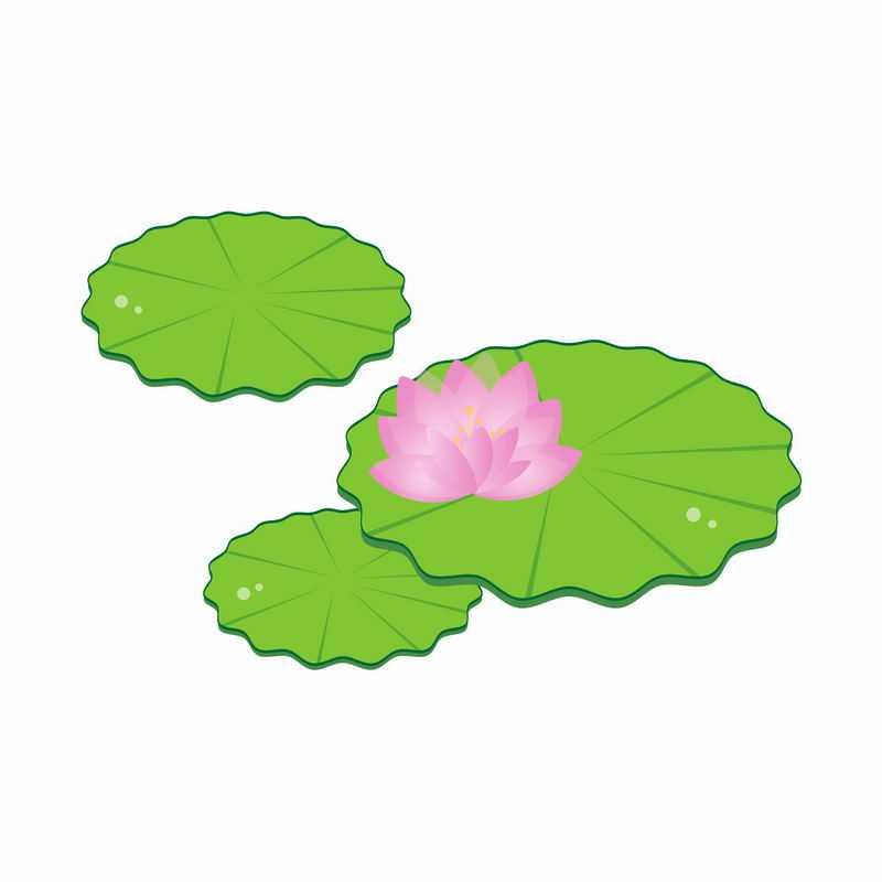 粉红色莲花和绿色莲叶水生植物简约插画4587307矢量图片免抠素材