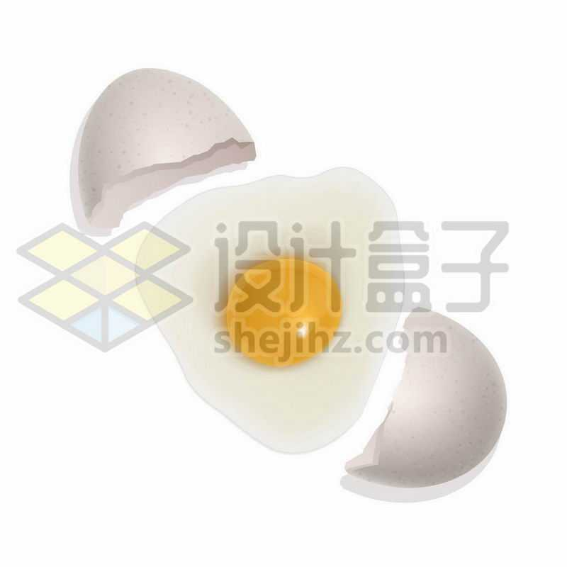 分裂的鹅蛋壳鸭蛋壳和蛋清蛋白美味美食1004249矢量图片免抠素材