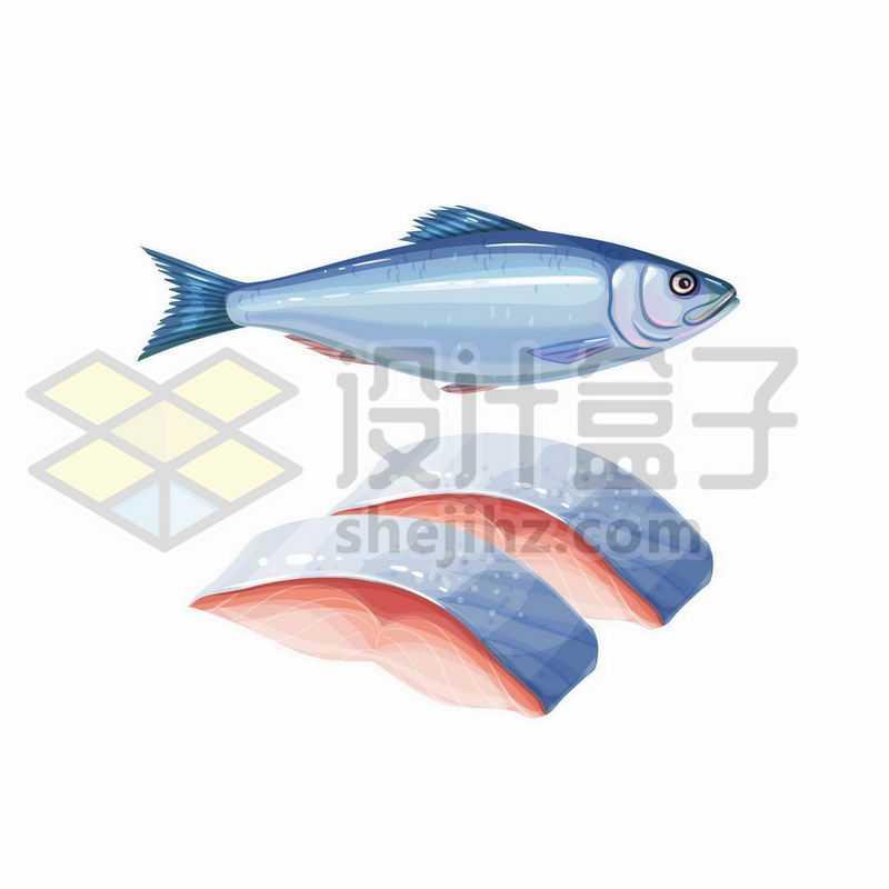 一条三文鱼和鱼肉3074329矢量图片免抠素材