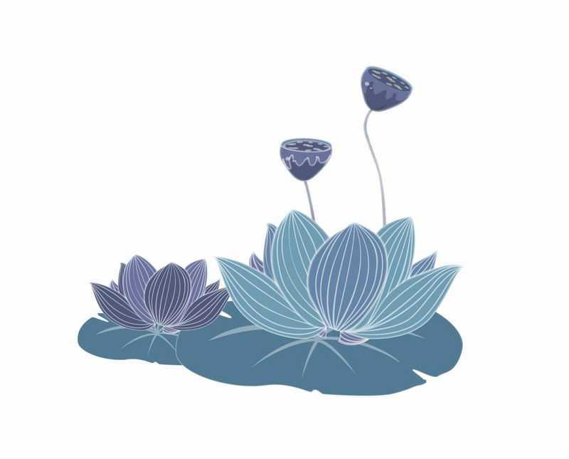 蓝紫色盛开的荷花莲花和荷叶莲叶手绘插画4118154AI矢量图片免抠素材