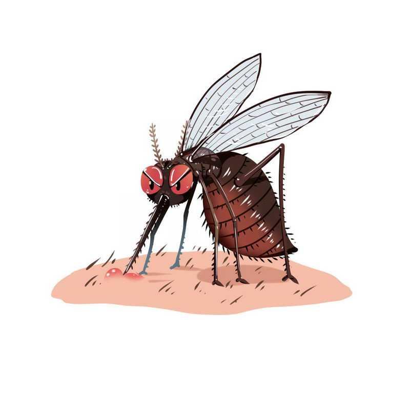 卡通蚊子正在吸血手绘插画6971360免抠图片素材