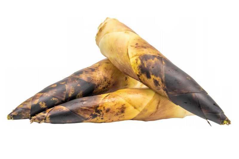 3根毛竹笋春笋美味蔬菜1670464png图片免抠素材