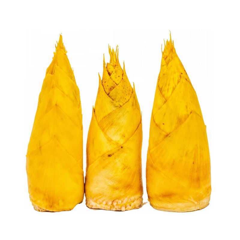 3根毛竹笋春笋美味蔬菜4612596png图片免抠素材