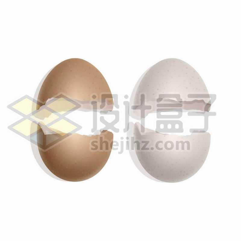 分裂的蛋壳鸡蛋壳鹅蛋壳鸭蛋壳1211472矢量图片免抠素材