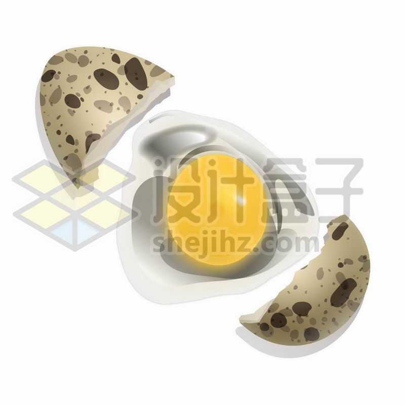 分裂的鹌鹑蛋壳和蛋清蛋白美味美食7504518矢量图片免抠素材